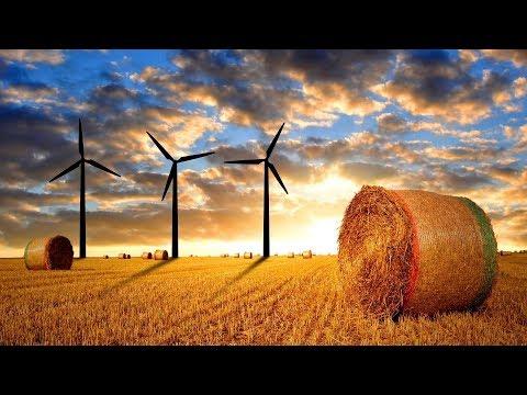 Как открыть фермерское хозяйство / Бизнес идея