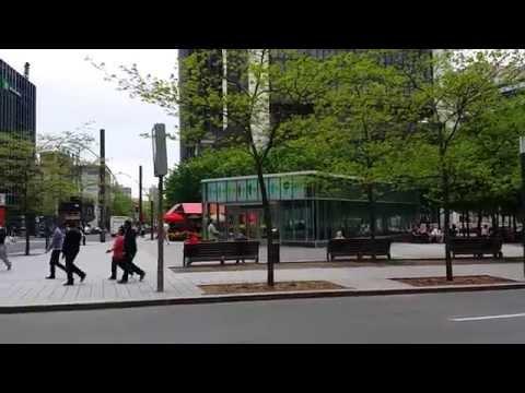 Bureau immigration à Montréal