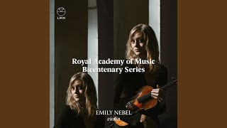 Violin Sonata No. 2 in G Major: III. Perpetuum mobile - Allegro