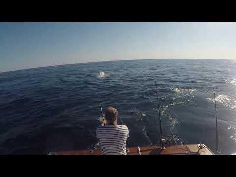 Blue Rampage, Big Game Fishing, Algarve - Portugal 2018