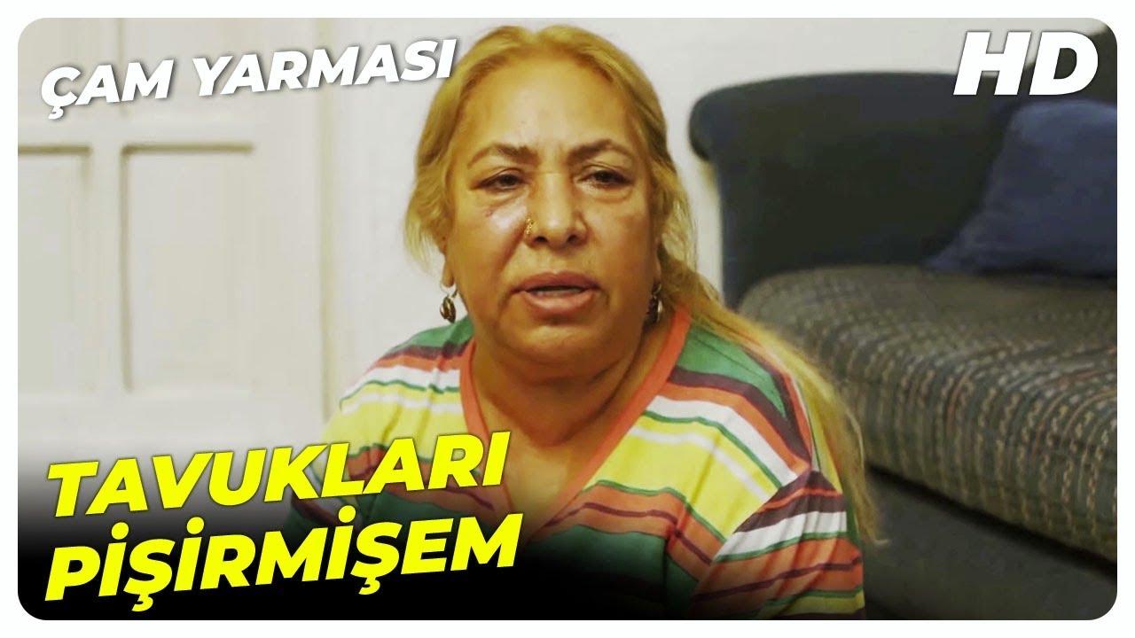 Çam Yarması Dilberay Sahnesi | Çam Yarması Türk Komedi Filmi
