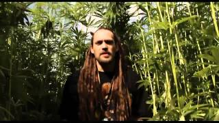 POSITIV YOUNG LION - CANNABIS CLIP OFFICIEL HD