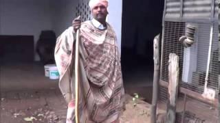 The Snake Charmer | Punjab, India