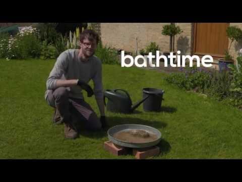 Make the perfect bird bath