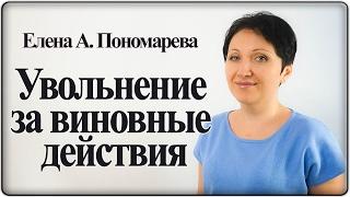 видео 81 тк рф