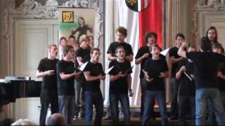 Academy Singers Männerchor Alta Trinita Beata