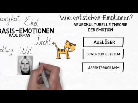 ich.kurs Emotionen erkennen: Basis-Emotionen