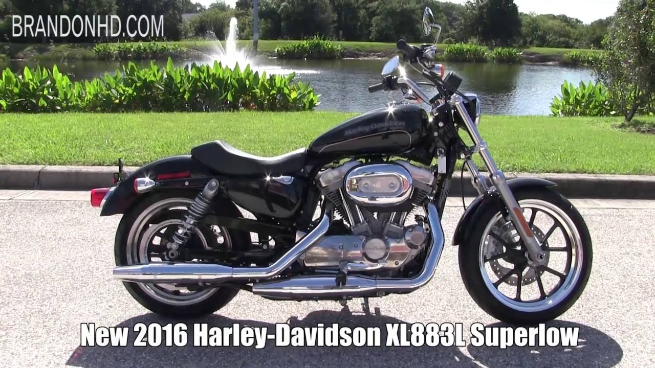 2019 Harley Lineup Soon To Be Release New 2016 Davidson 883 You