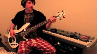 Red Hot Chili Peppers - Suck My Kiss [bass Cover]