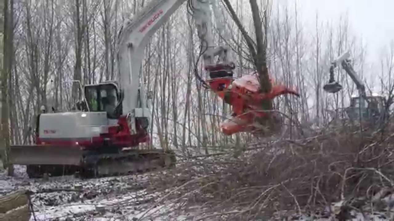 Atemberaubend Fäller-Bündler-Bagger bei Pappel Energiewald/Kurzumtrieb Ernte &ZX_18