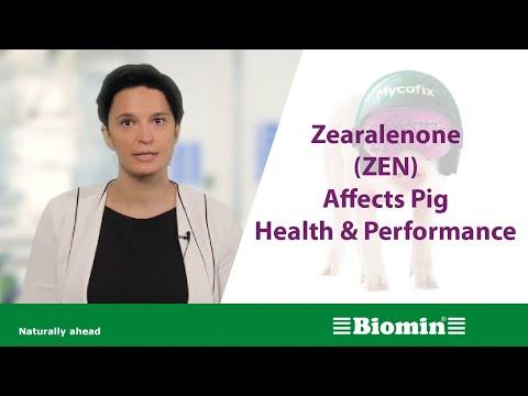health performance