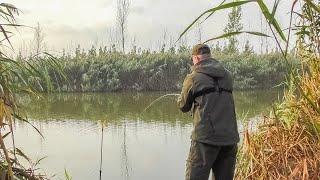 ДА КТО В ЭТОЙ ЯМЕ!!!? ПРОВЕРИЛ ЕЩЕ ОДНУ, НЕ ОЖИДАЛ ТАКОГО КЛЕВА!!! Рыбалка на донки осенью.