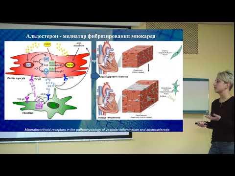 Первичный гиперальдостеронизм. Кардиологические аспекты
