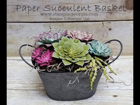 Paper Succulents Basket