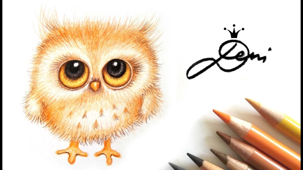 flauschi gezeichnet niedliche eule illustrieren cute owl drawing youtube. Black Bedroom Furniture Sets. Home Design Ideas