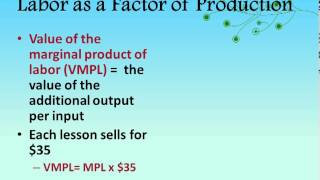 Unit 6 Topic 2: Value of the Marginal Product
