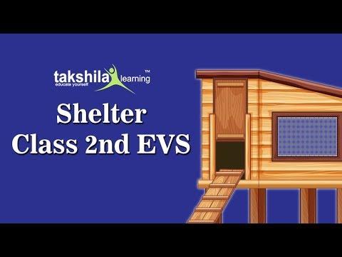 CBSE Class 2 EVS : Shelter   Class 2 EVS CBSE School Syllabus Videos   NCERT