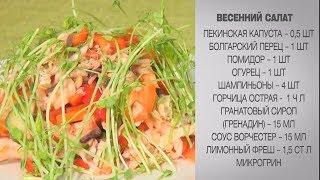 Весенний салат / Простой салат / Салаты без майонеза / Простой салат / Весенний рецепт / Салат