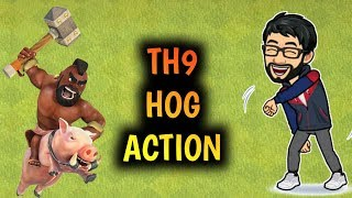HOGS ARE FUN, TH9 LIVE ACTION