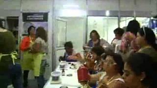 RIO ARTES MANUAIS 2013