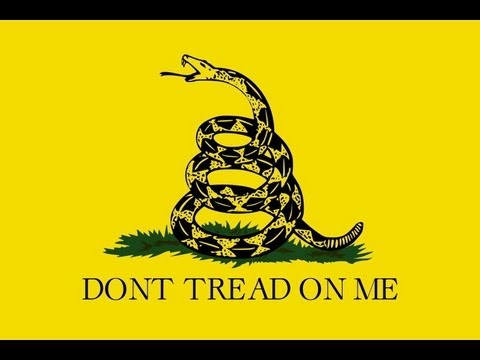 First Hand Account Of IRS Tea Party Harassment W/ Nor-Cal Tea Party - The Jesse Peterson Show