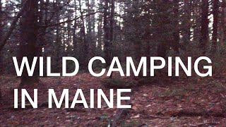 Wild camping in Maine ~ almost killed by bears!