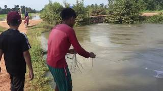 Traditional Net Fishing in the river