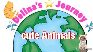 Delina travels to turkey and finds.. # travel kids #kidsvideos #cutepets #delinas journey