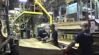 How It's Made - Purebond Plywood