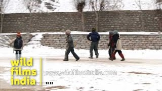 Children play in the snow as a winter storm hits Ladakh