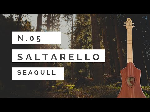 Saltarello (Vincenzo Galilei 1520 - 1591) - Seagull merlin tutorial n 5