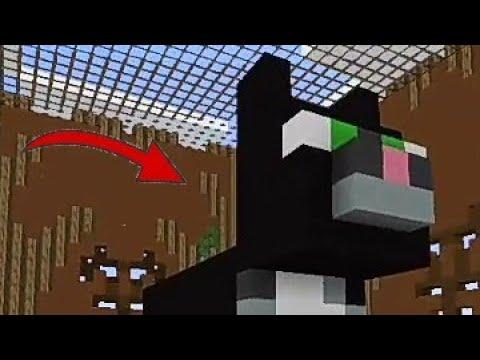 Строим с Подписчиками Кота в Build Battle (Blockman Go)