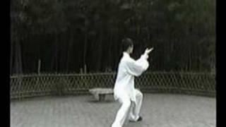 陳式太極拳Chen Style part 1(新架)一路八十三式、その一/ New Frame 83 form