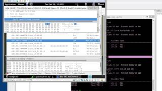 cisco l2 dtp and root switch attack kali yersinia and prevention