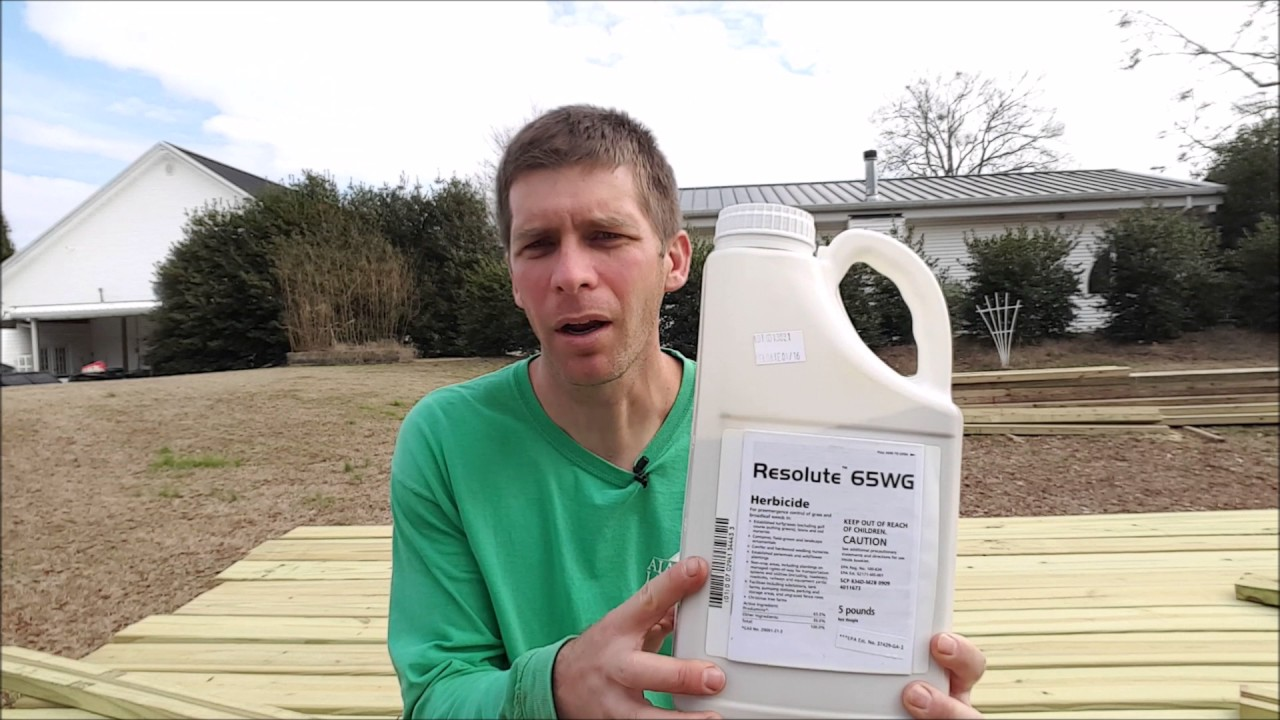 how to control crabgrass in winter with a pre emergent herbicide - Preemergent Herbicide