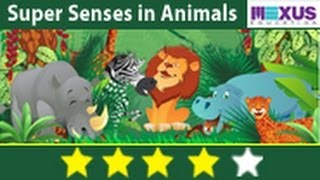 Learn Biology: Study about the Super Senses in Animals