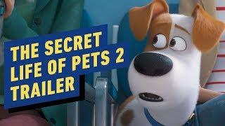 The Secret Life of Pets 2 - Official Trailer (2019) Kevin Hart, Patton Oswalt