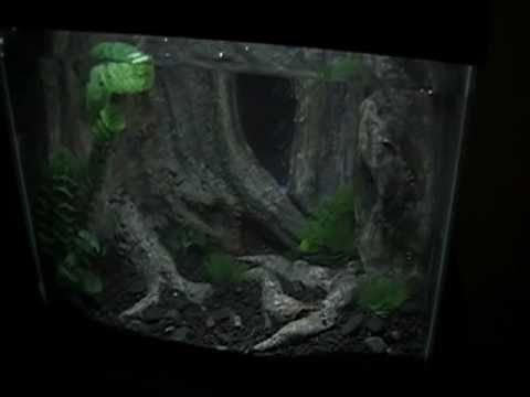 My 3D Resin Aquarium Background THANK YOU uarujoey for the tips!