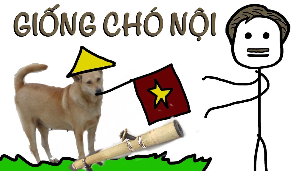 Các Giống Chó Bản Địa Việt Nam - Đại Khái Là Thế