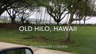 Private Tour of Old Hilo, Hawaii