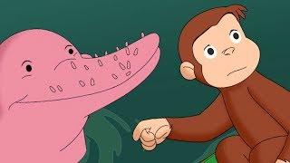 Jorge el Curioso en Español Aventura de Jorge en el Amazonas  Compilación  Caricaturas Para Niños