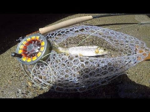 Fly Fishing At Dinkey Creek