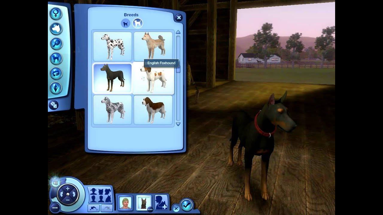 Sims  Dog Breeds