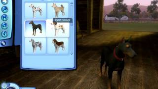 The Sims 3 Pets: Big Dog Breeds