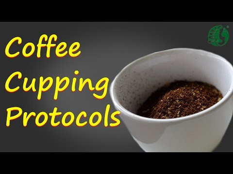 Coffee Cupping Protocols