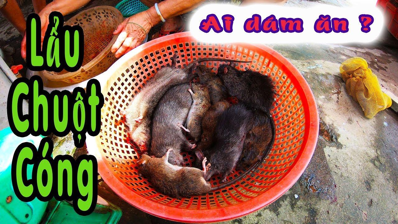🅿️ Ăn Lẩu CHUỘT CỐNG nấu Khoai Môn   Món Ăn Ghê Rợn   MOUSEEN POT hot pot cooked Taro   PhongLTK
