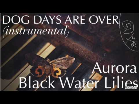 AURORA - Black Water Lilies (Instrumental Cover)