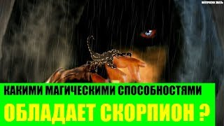 видео Магия знака зодиака — Скорпиона