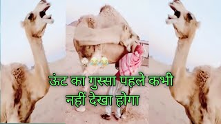 Zilli Very funny joke video || Top Comedy Video || zili funny video 2020