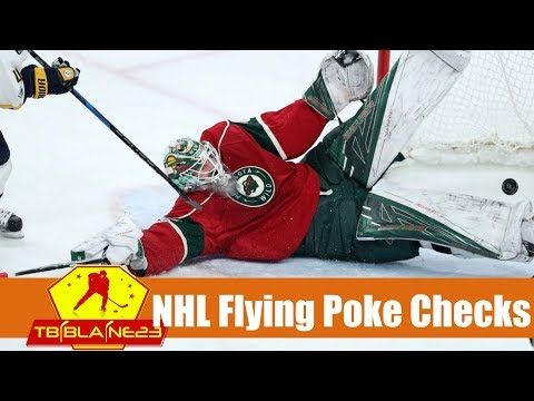 NHL Flying Poke Checks